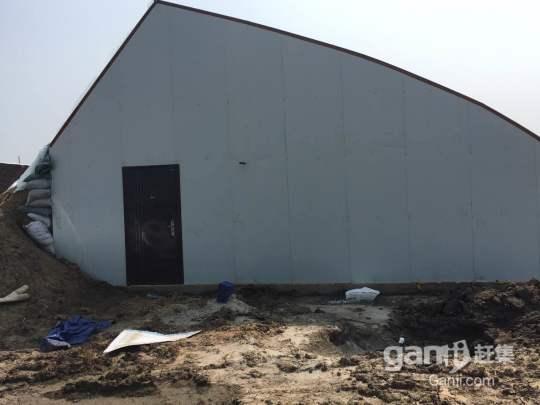 铁岭县双井子范家村50亩新建室内大棚出租出售-图(7)