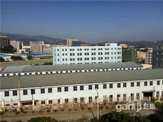 龙州工业园入口处标准厂房、挑高车间、写字楼招租-图(6)