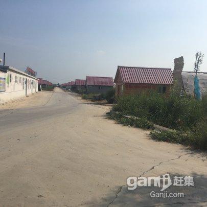 东营区-西城 高温大棚出租-图(8)