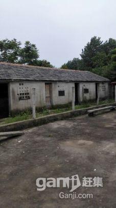 滁州市南谯区黄泥岗镇-图(4)