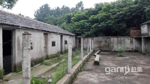 滁州市南谯区黄泥岗镇-图(7)