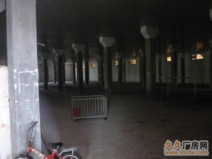 广德县四合乡大面积闲置厂房出租-图(2)