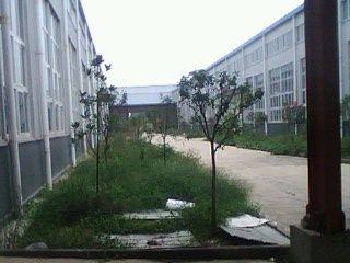 东本汽车产业园3200M2钢构车间-图(1)