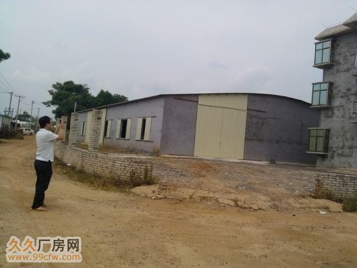 新大洲大道儒传村新建成1200平900平厂房仓库出租&nbs-图(2)