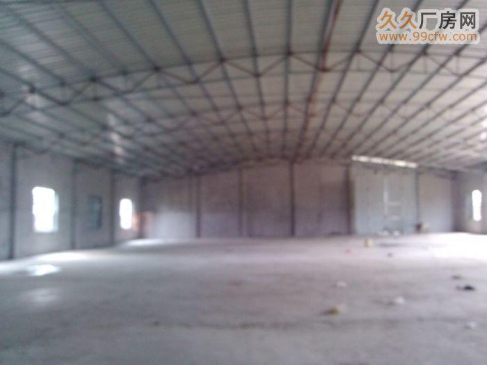 新大洲大道儒传村新建成1200平900平厂房仓库出租&nbs-图(3)