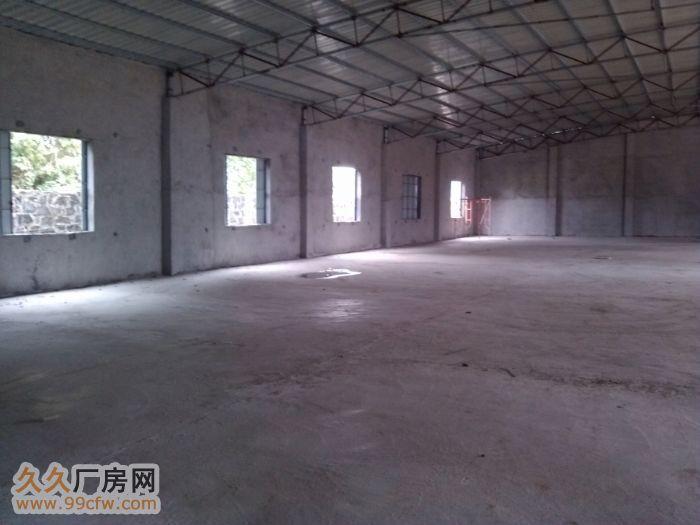 新大洲大道儒传村新建成1200平900平厂房仓库出租&nbs-图(4)