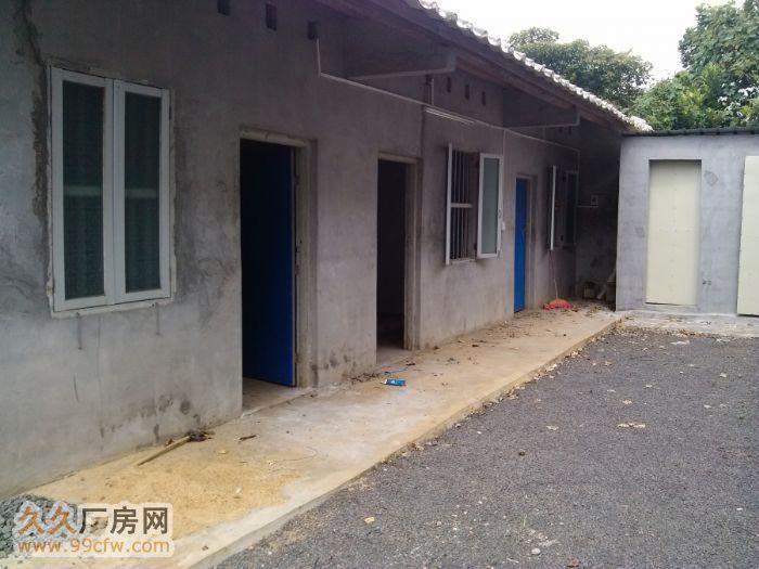 新大洲大道儒传村新建成1200平900平厂房仓库出租&nbs-图(6)