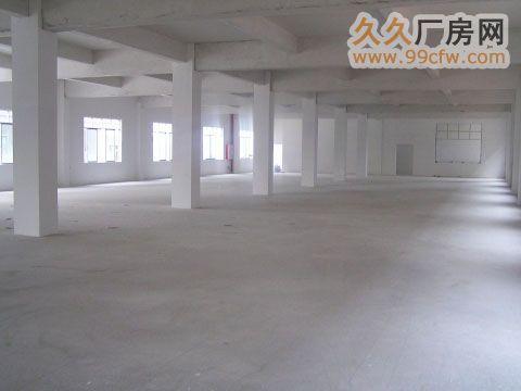 900方独立厂房招租-图(2)