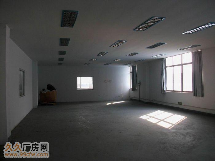 900方独立厂房招租-图(3)