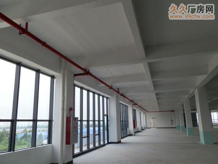 多层标准厂房数据: 每栋四层,每层面积约2500m2 首层高度:6.