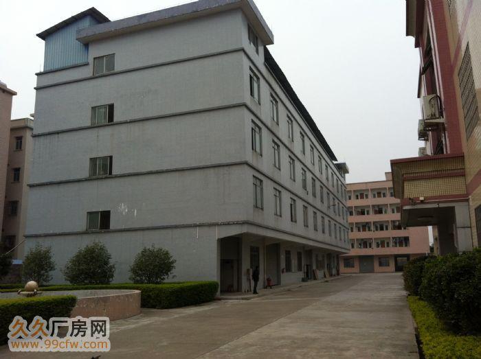 芙蓉镇独立7000M标准出租-图(3)