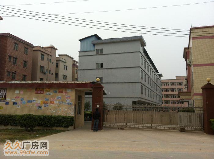 芙蓉镇独立7000M标准出租-图(5)