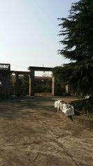 岳阳县境内大面积厂房,土地出租或转让,1万平米以上-图(1)