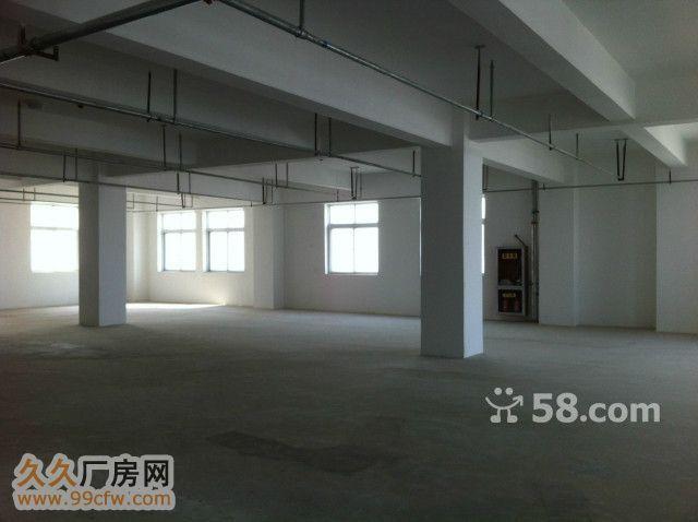 高新科技园框架1楼120-图(3)