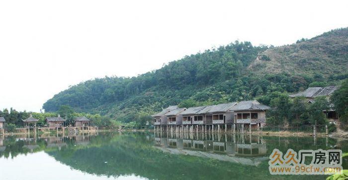 鱼池,水塘,山庄出租-图(1)