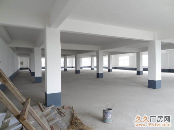 出售/出租张博路附线厂房/办公楼-图(1)