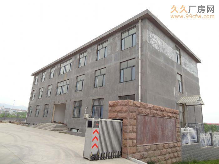 出售/出租张博路附线厂房/办公楼-图(4)
