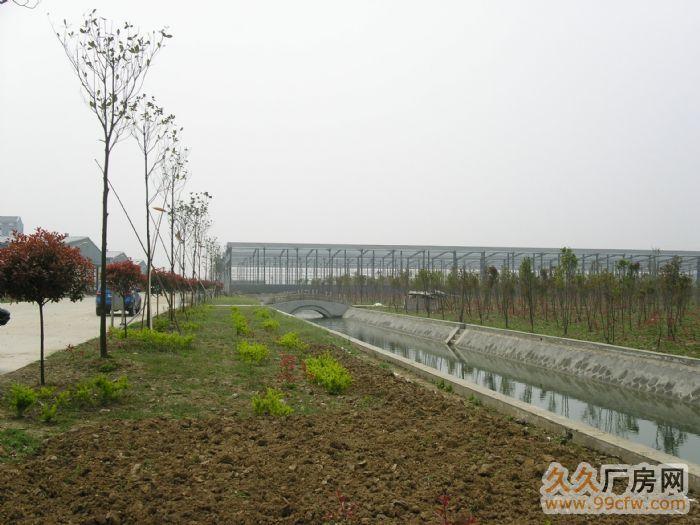 湖北省云梦县316国道旁新建厂房出租-图(6)