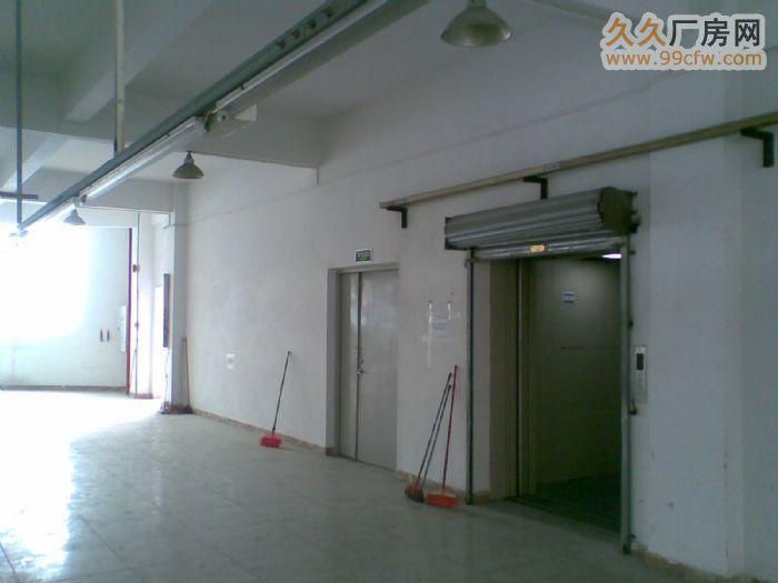 (出租)番禺工业园(电梯厂房)-图(3)