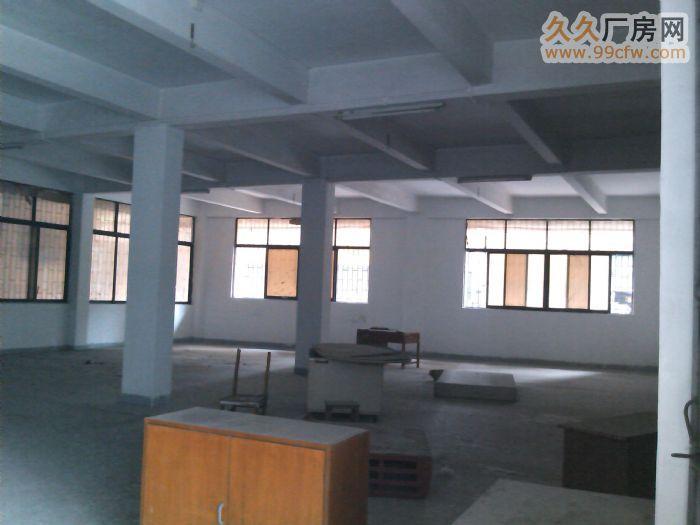 番禺工业园(电梯厂房)出租-图(2)