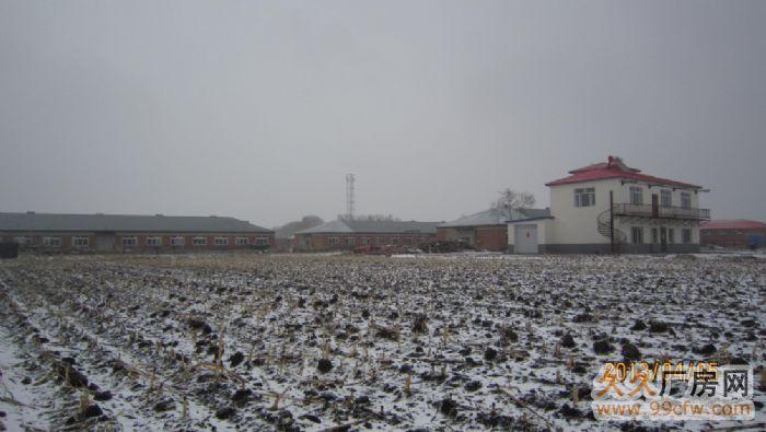 养殖,工厂均可,围墙的院工业地照,可分租。动力电是必需的-图(7)