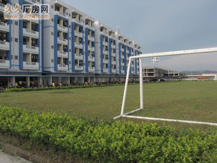 苍梧工业园区内标准厂房出租-图(3)