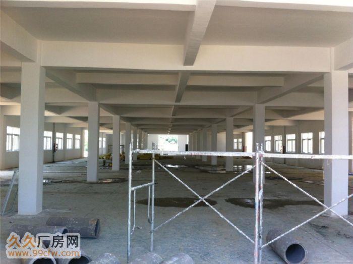 安徽金门集团新建三栋厂房对外出租-图(3)