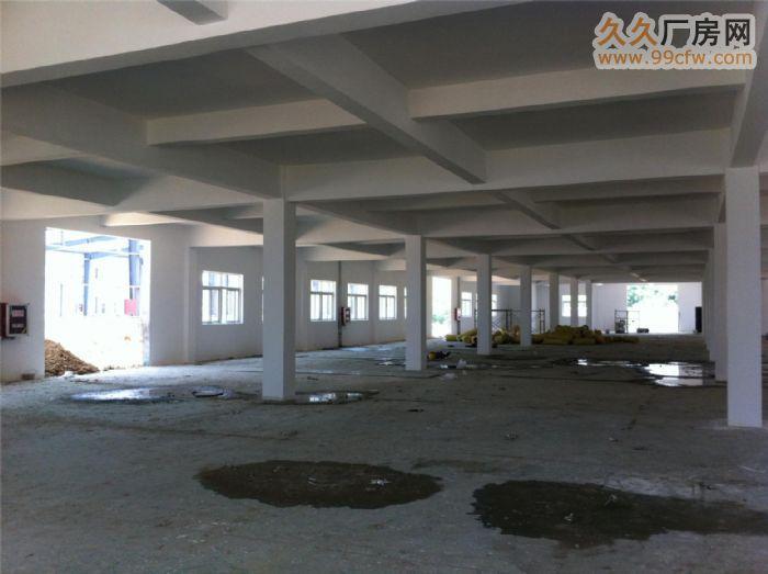 安徽金门集团新建三栋厂房对外出租-图(4)