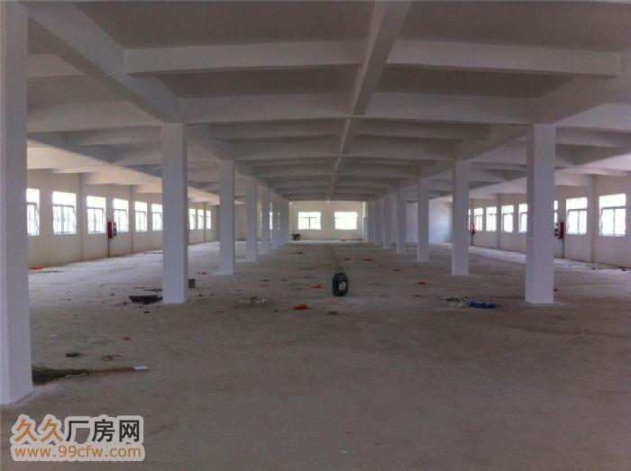 安徽金门集团新建三栋厂房对外出租-图(6)