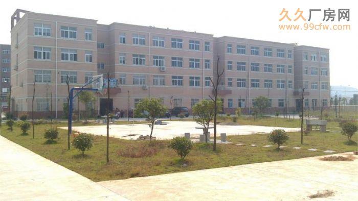 安徽金门集团新建三栋厂房对外出租-图(7)