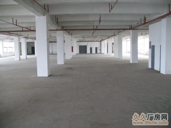 萝岗开发西区中小型厂房出租-图(3)