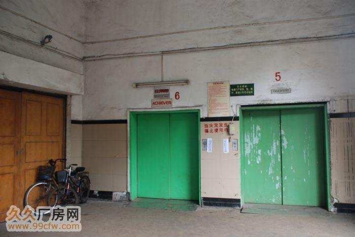 萝岗开发西区中小型厂房出租-图(4)
