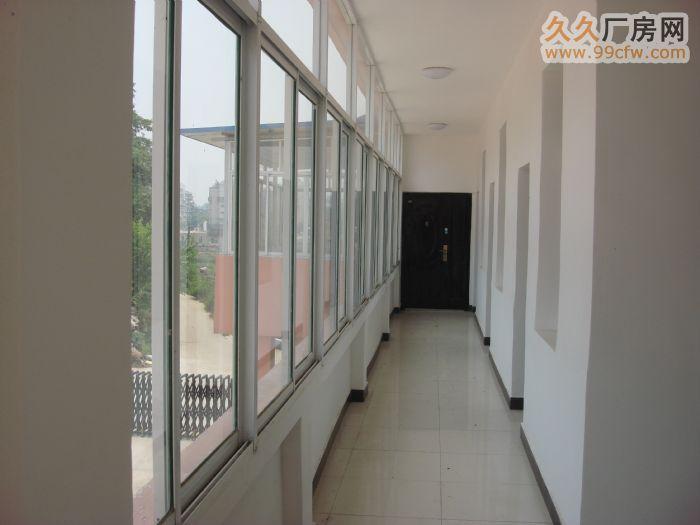 安庆大观区独门大院3500㎡厂房寻租或合作开发-图(4)