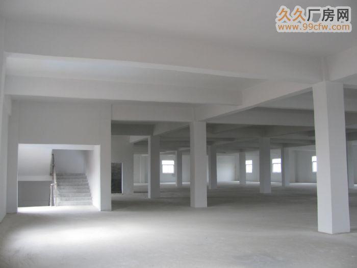 安庆宜秀白泽湖乡安枞路光彩四期附近大面积厂房/仓库-图(5)