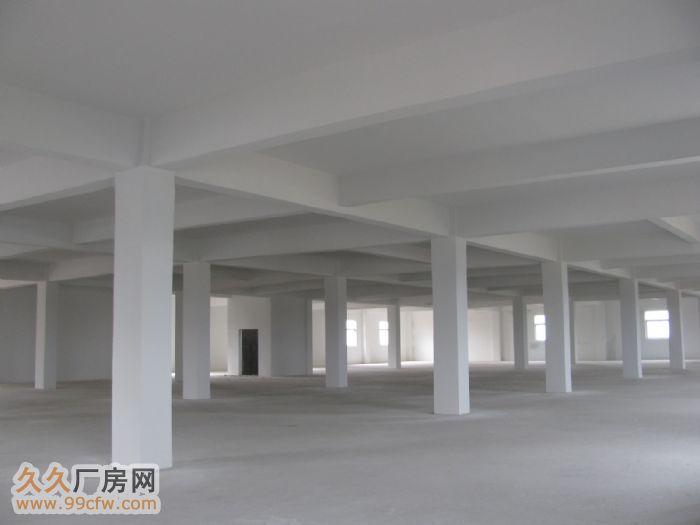 安庆宜秀白泽湖乡安枞路光彩四期附近大面积厂房/仓库-图(6)