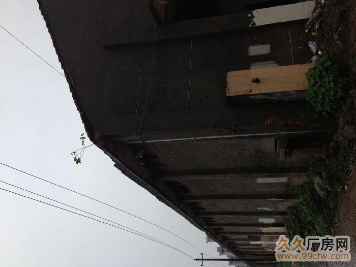 1000平米厂房出租-图(3)