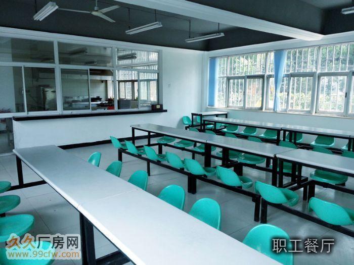 南京市区厂房低价出租-图(7)