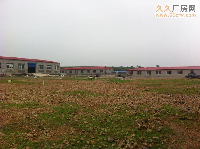 出租出售新建厂房大院养殖场交通便利&-图(2)
