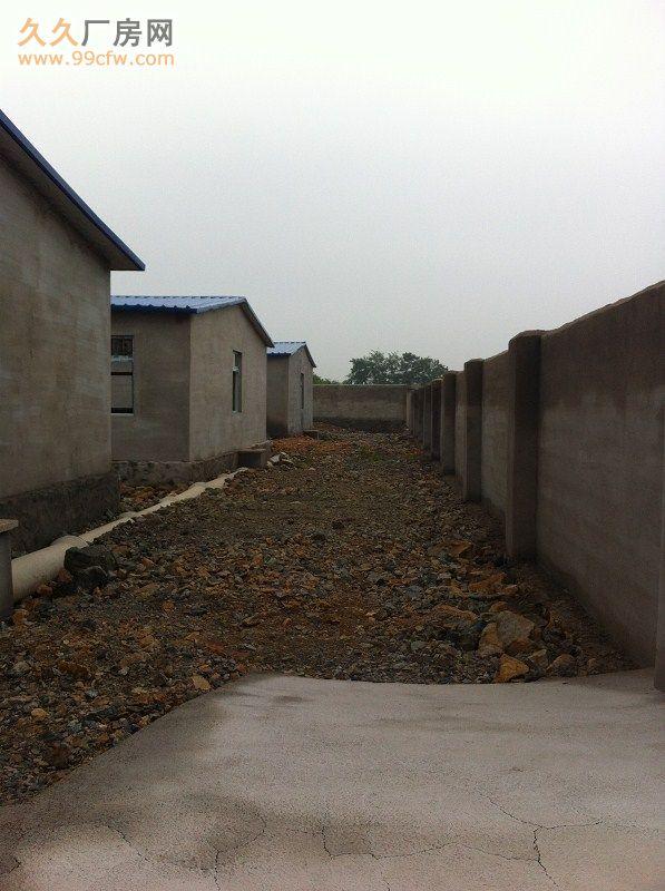 出租出售新建厂房大院养殖场交通便利&-图(3)