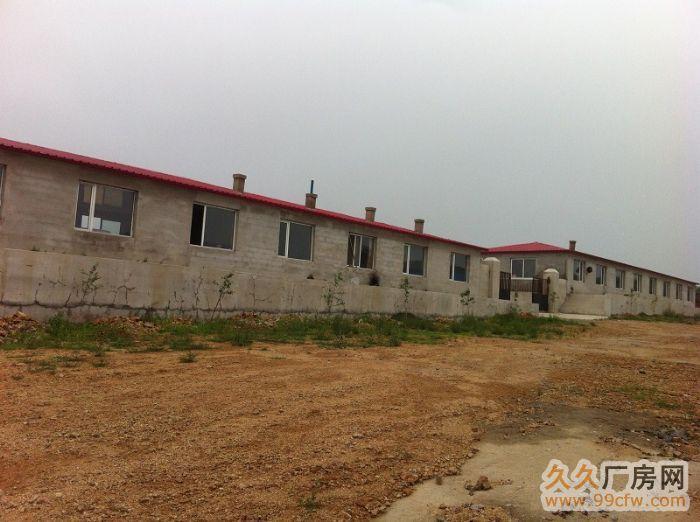 出租出售新建厂房大院养殖场交通便利&-图(4)