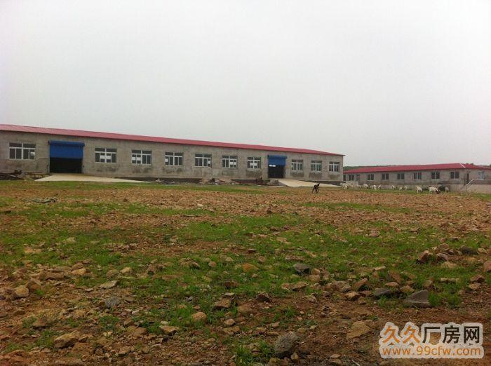 出租出售新建厂房大院养殖场交通便利&-图(5)