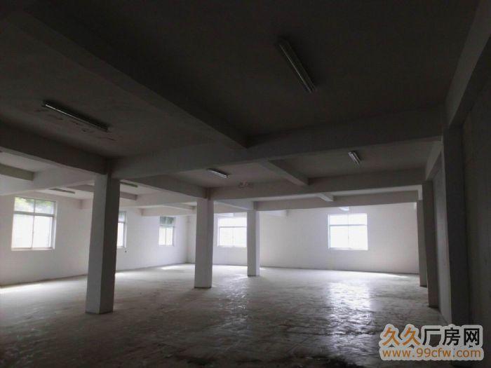 三东大道简易4000方厂房出租,空地大-图(2)