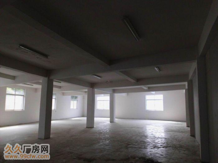 花港大道简易5000方厂房出租,空地大-图(2)