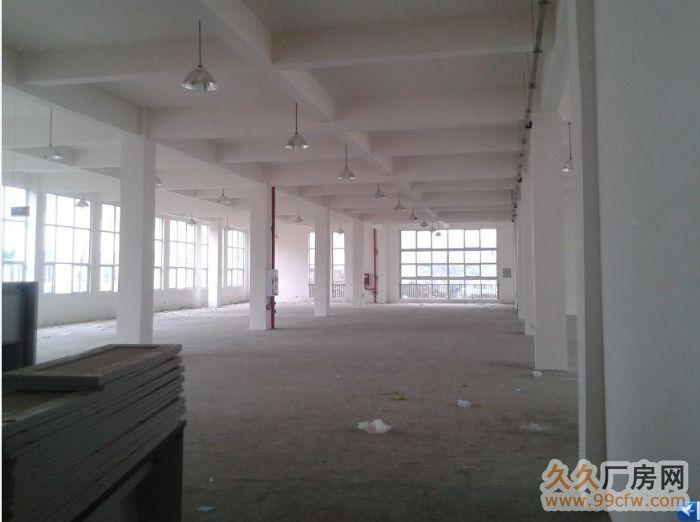 广州市花都区花山镇全新标准厂房出租-图(2)