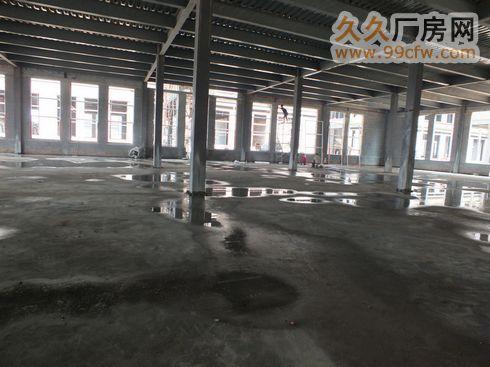 新型工业园厂房火热招租可出售(直招)-图(5)