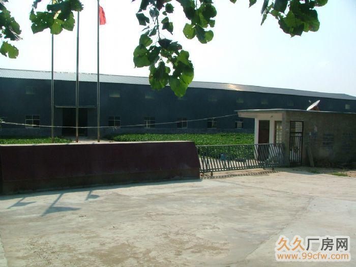 河南省太康县五里口西开发区厂房出租-图(1)