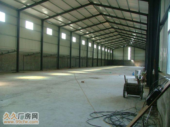 河南省太康县五里口西开发区厂房出租-图(2)