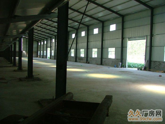 河南省太康县五里口西开发区厂房出租-图(3)