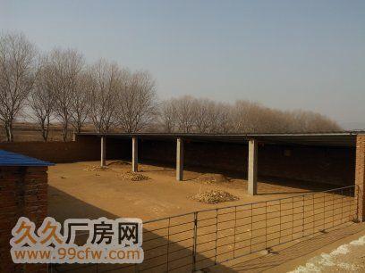 皮口镇果木园村畜牧养殖基地出售-图(4)