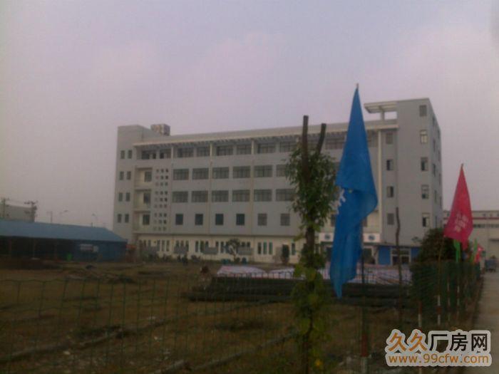 位于宣州区经济开发区(东区)金阳路7号院内有部分厂房对外出租-图(2)